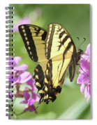Butterfly #9 Spiral Notebook
