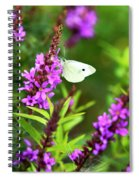 Butterfly And Bouquet Spiral Notebook