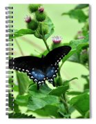 Butterfly And Mossy Pond Spiral Notebook