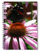 Butterfly And Pink Cone Flower Spiral Notebook