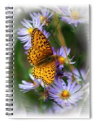 Butterfly Bliss Spiral Notebook