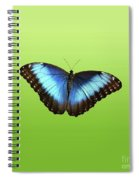 Butterfly Blue Morpho On Green Spiral Notebook