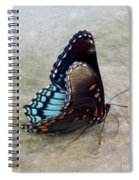Butterfly Blue On Groovy 2 Spiral Notebook
