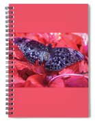 Butterfly Blues - Constable  Spiral Notebook