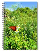 Butterfly Bonanza Spiral Notebook