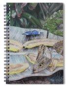 Butterfly Brunch Spiral Notebook