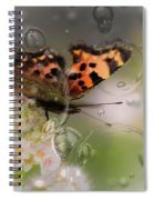Butterfly Bubbles Spiral Notebook