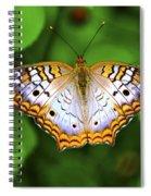 Butterfly Closeup Spiral Notebook