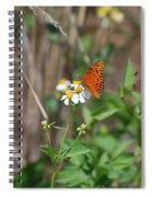 Butterfly Flower Spiral Notebook