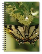 Butterfly From Another Side Spiral Notebook