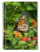 Butterfly Garden Spiral Notebook