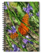 Butterfly In Blue Spiral Notebook