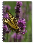 Butterfly In Lavender Spiral Notebook