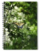 Butterfly In Muted Green Background Spiral Notebook