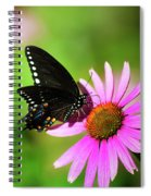 Butterfly In The Sun Spiral Notebook
