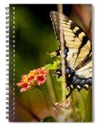 Butterfly Jungle Spiral Notebook