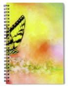 Butterfly Love Spiral Notebook