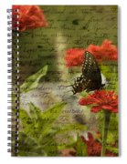 Butterfly Notes Spiral Notebook