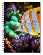 Butterfly Of The Sea Spiral Notebook