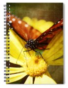 Butterfly On A Daisy  Spiral Notebook