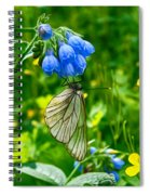 Butterfly On A Flower Spiral Notebook