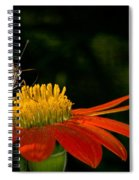 Butterfly On Blossom Spiral Notebook