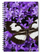 Butterfly On Campanula Get Mee Spiral Notebook