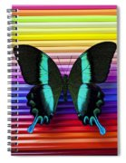 Butterfly On Colored Pencils Spiral Notebook
