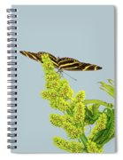 Butterfly On Flower Cluster Spiral Notebook