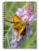 Butterfly On Flower Spiral Notebook