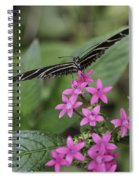 Butterfly On Pink Flowers Spiral Notebook