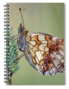 Butterfly On The Grass Spiral Notebook