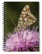Butterfly On Thistle Spiral Notebook