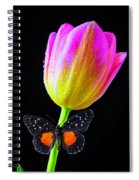 Butterfly On Yellow Pink Tulip Spiral Notebook