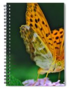 Butterfly Pose Spiral Notebook