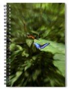 Butterfly Race Spiral Notebook