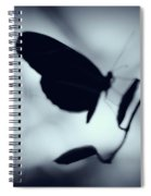 Butterfly Silhouette  Spiral Notebook