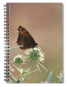 Butterfly Spring Nature Morning Scene Spiral Notebook