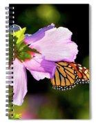 Butterfly Sunset Spiral Notebook