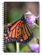 Butterfly - The Monarch  Spiral Notebook
