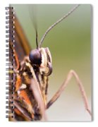 Butterfly Tongue Spiral Notebook