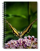Butterfly Victory Spiral Notebook