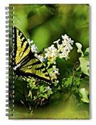 Butterfly Wall Decor Spiral Notebook