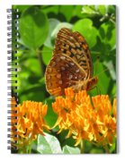 Butterfly Weed Fritillary Spiral Notebook