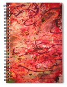 Butterfly Wing Nr1 Spiral Notebook