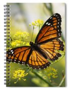 Butterfly Wings Spiral Notebook