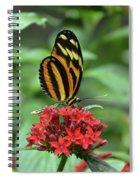 Tiny Beauty Spiral Notebook