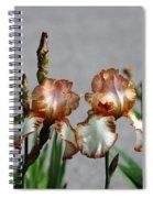 Butterscotch Ripple Spiral Notebook