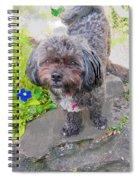 Buttons Magoo Spiral Notebook