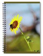 Buzy Bee Spiral Notebook